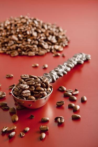 Koffiebonen op een lepel van Michael Aram
